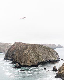 California's Hidden Gem